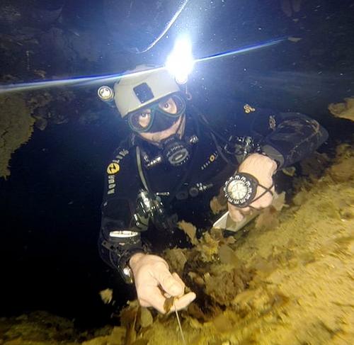 Pandora Cave Mexico, Under the Jungle, Cenote Exploration