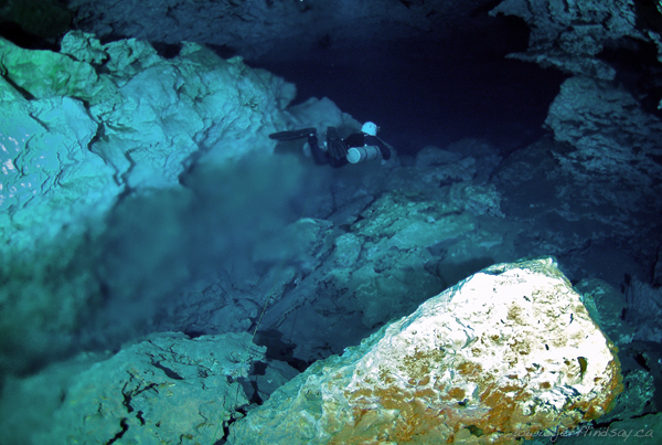 The Halocline at Cenote Ponderosa