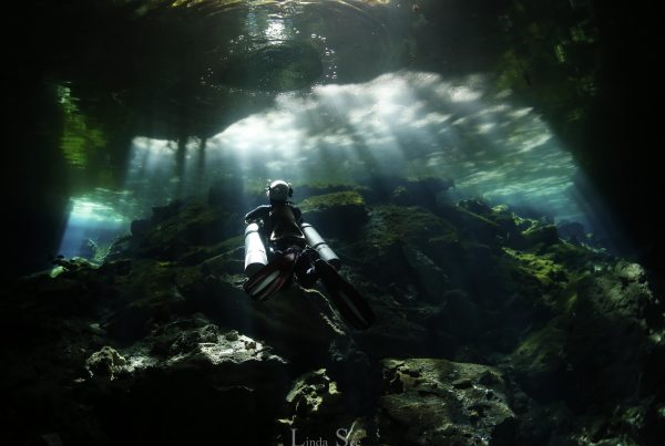 Cenote Photos, Linda See Photography, Cenote Diving Chemuyil. Cavern Diving Chemuyil
