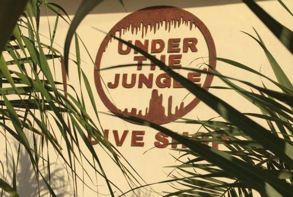 Under the Jungle Dive Shop, Cave Diving Center Akumal, Cave Diving Center Mexico, TDI Dive Center Akumal. TDi Dive Center Puerto Aventuras