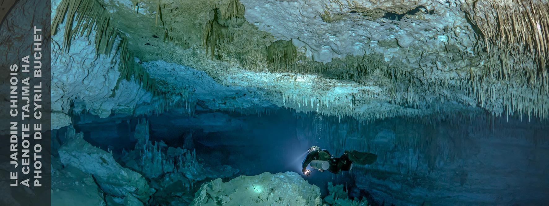 Cenote Tajma Ha, Cave de jardin chinois, Sous la jungle, Mexique Plongée en grotte, Mexique Plongée en plongée, Cyril Buchet Photographie