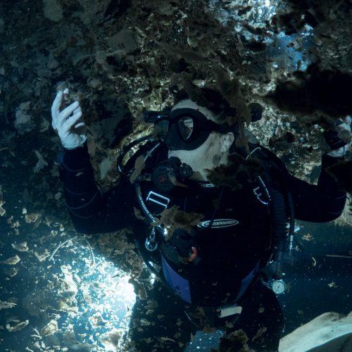 Under the Jungle, Patricia Beddows, Pandora Cave, Bacteria Cave, Bacteria Cenote
