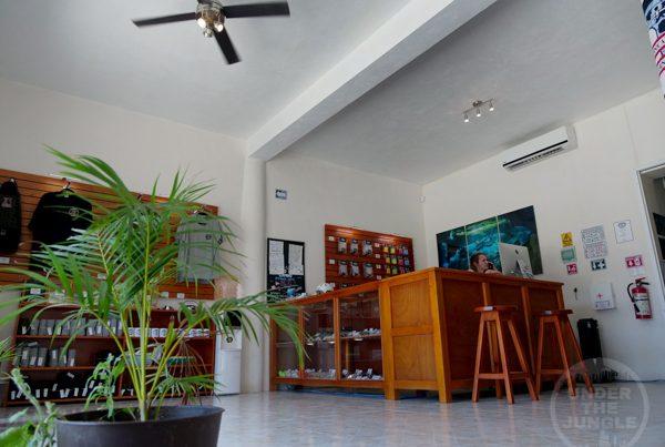 Under the Jungle, Cave Diving Shop Tajma Ha, Tajma ha Dive Shop, Taj Mahal Dive Shop, Tulum Cenote Diving