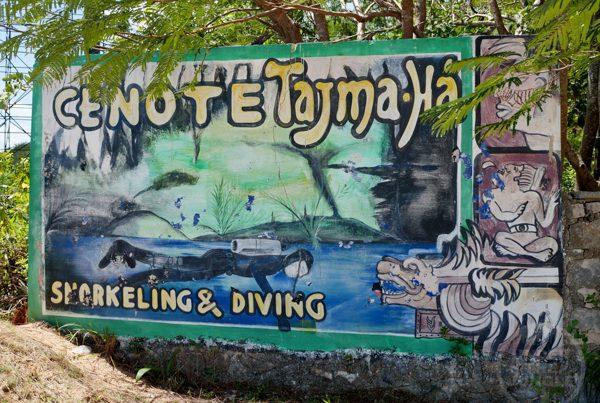 Cenote Tajma Ha, Under the Jungle, Tajma Ha Dive Shop, Taj Mahal Dive Shop, Taj Mahal Cenote
